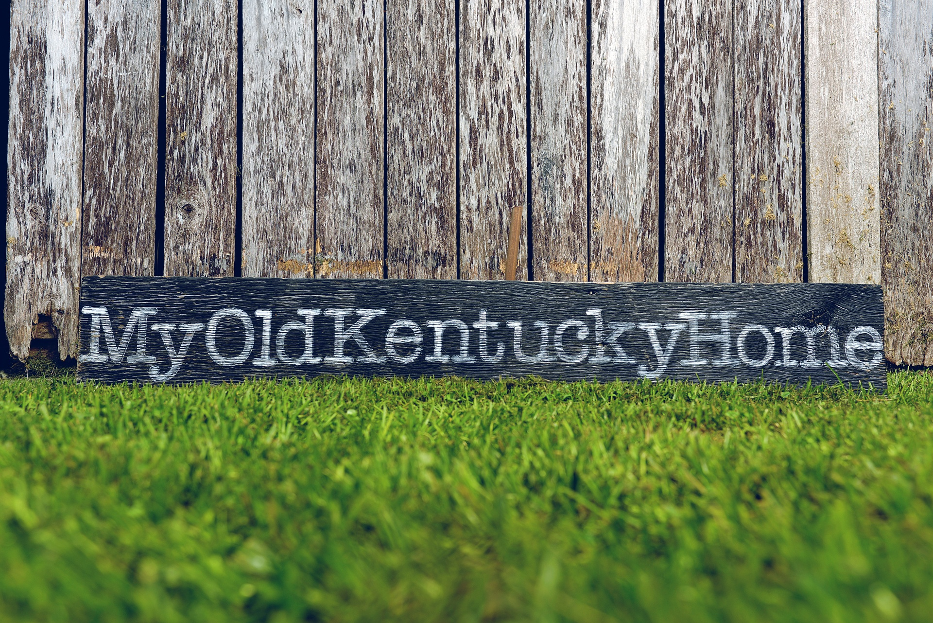 Pictures of my old kentucky home